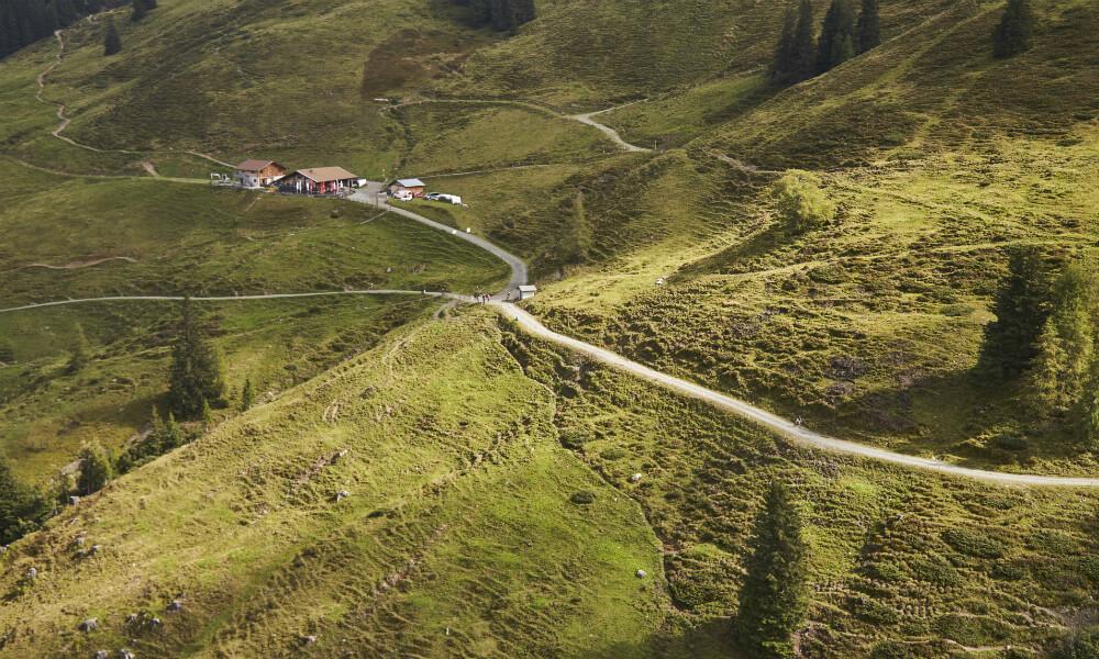 Rund um die Hacklbergalm gibt es viele Rad- und Wanderwege.